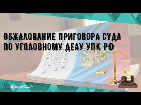 Обжалование приговора суда по уголовному делу УПК РФ