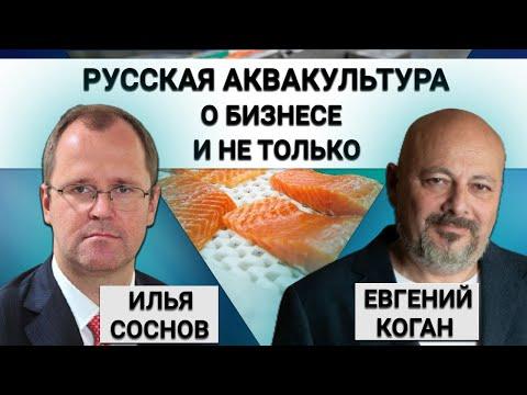 , title : 'Дела рыбные: гендиректор Русской Аквакультуры о бизнесе и не только.