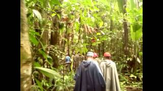 preview picture of video 'Amazing One Day Trip in Leticia Amazonas'
