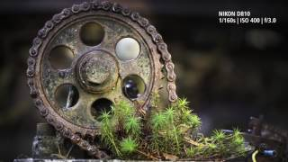 'The Beauty of Rust' | AF-S VR Micro NIKKOR 105mm f/2.8G IF-ED | Macro Lens Masterclass