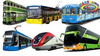 Машинки - изучаем транспорт и цвета, поезда и технику для детей. Обучающее видео
