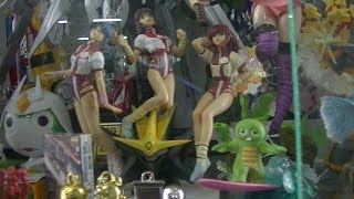 preview picture of video 'Gundams, Gunbuster, Evangelion, Miku Hatsune, Kamen, Hobby Kid, P2'