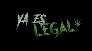 Ya Es Legal - Fuera De Serie