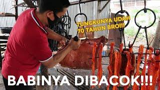 Apin Siobak 806 Percut, KODE KERAS buat kelen Pecinta Babi Panggang!