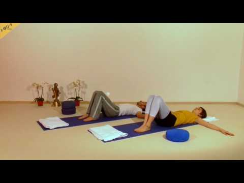 Die Muskeln des Rückens die Haltung