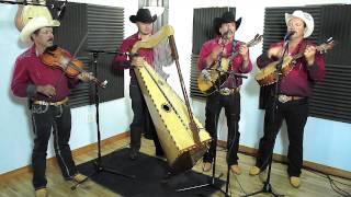 Conjunto De Arpa Grande (Porque Te Vas De Mi) Jilgueros Michoacános 2013