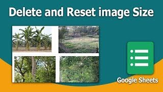 How to Delete and Reset image size from Sheets in Google Spreadsheet
