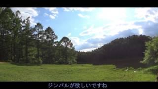 長野県伊那市千代田湖キャンプ場