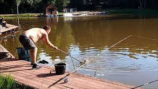 Верхний качаловский пруд рыбалка