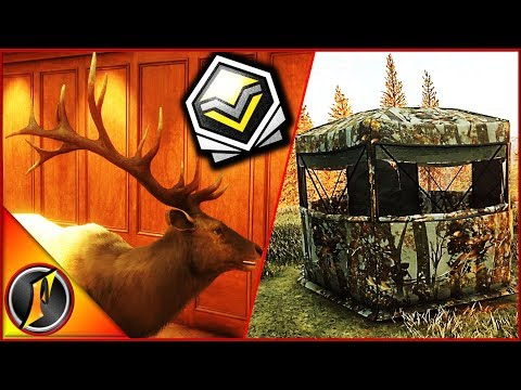 Setting up on a Diamond Elk! | theHunter Call of the Wild