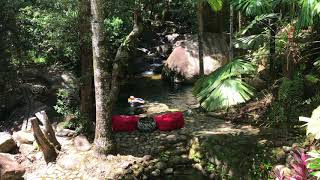 This could be you. Check out availability for this 3 bedroom guesthouse in the heart of the Daintree. The only property with its own private swimming pool and waterfalls.