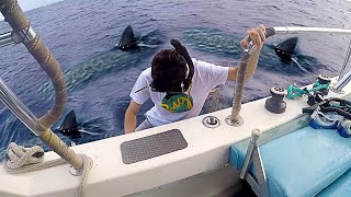 I went swimming with Sharks... (scariest experience ever) - Video Youtube
