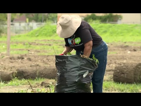 Local organization continues community cleanup despite pandemic