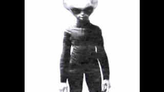 Area 51 interview EBE1 EBE2 alien survivor zeta reticuli