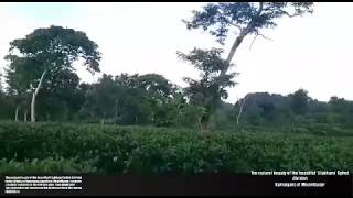 preview picture of video 'The natural beauty of the beautiful Lilabhumi Sylhet division Kamalganj of Moulvibazar'