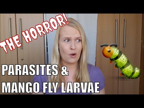 Hogyan lehet felismerni egy parazitát egy személyben