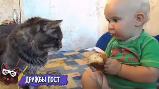Лучшие Приколы Недели Июль 2016    Смешное Видео Корпорация Зла 2