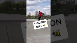 1 MILLION BEES Attack The Skatepark.