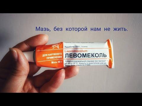 Gut dysbiosis zinc