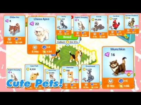 Video of Pet Shop Story™
