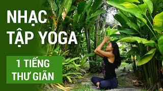 Nhạc tập Yoga, thiền thư giãn 1 tiếng