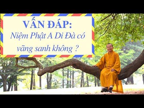 Vấn đáp: Tụng ít kinh, hôn trầm, niệm Phật vãng sanh, hương linh và ngoại cảm