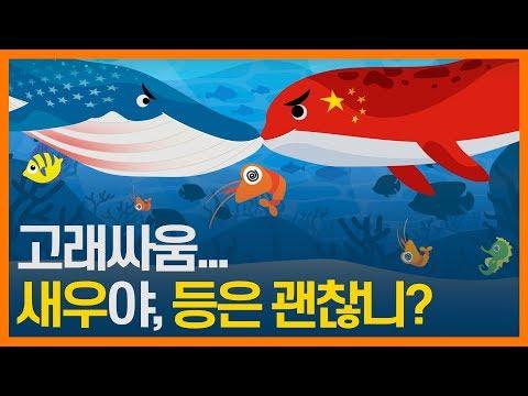 불확실한 세계무역시장에서 한국의 수출 지원 정책은? 동영상표지