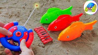Controller Carp, Excavator, Dump Truck, Fire Truck Toys for Kids - Kid Studio