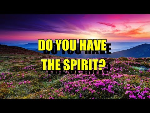 DO YOU HAVE THE SPIRIT?