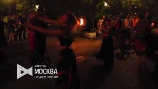 Рейд участников проекта «Лев Против» на Болотной площади