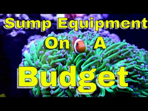 Sump On A Budget   What Equipment I Use