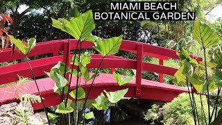 Botanical Garden Tour | Miami Beach