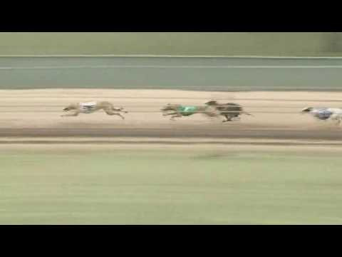 Race 75