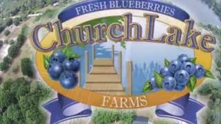 blueberry farm promo