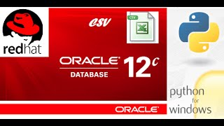 How to export CSV data from Oracle database using Python.