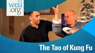 The Tao of Kung Fu