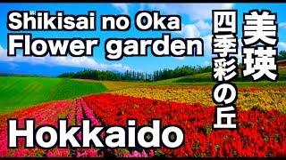 美瑛・四季彩の丘北海道FlowergardenhillofSHIKISAI富良野観光美瑛観光ディスカバーニッポン