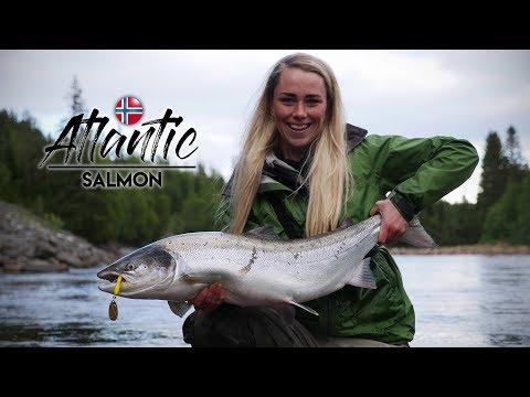 Laksefiskeri i Gaula i Norge