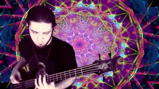 "Om - ""State Of Non-Return"" Bass Cover"