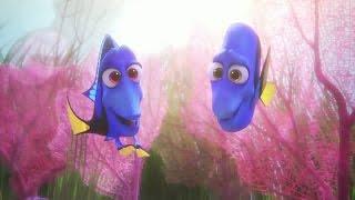 Trailer of Le monde de Dory (2016)