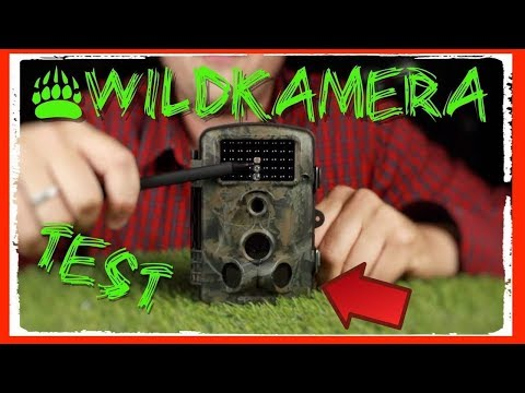 🔴WILDKAMERA APEMAN TEST / REVIEW DEUTSCH  ( TESTSIEGER )