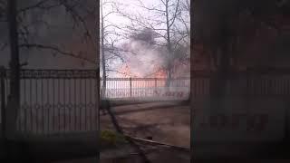 В Николаеве горел парк «Лески». Видео