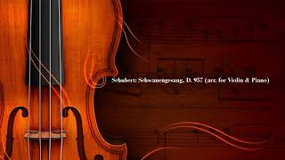 Franz Schubert - Serenade (Swan Song D 957) video
