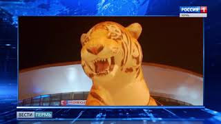 Возле Цирка появился гигантский тигр