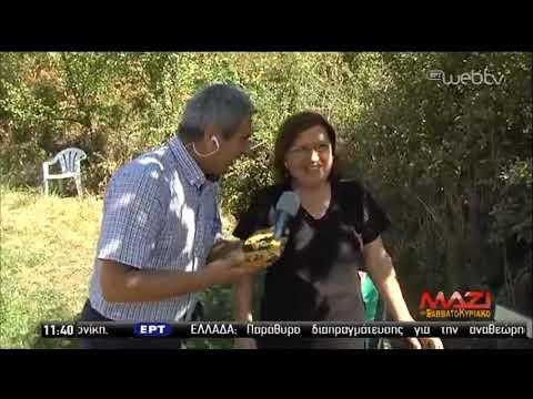 Παραδοσιακός Νερόμυλος στην Πεύκη Καλαμπάκας | 14/09/2019 | ΕΡΤ