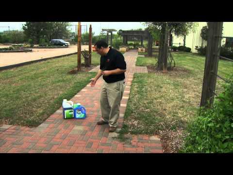 Controlling Bermudagrass