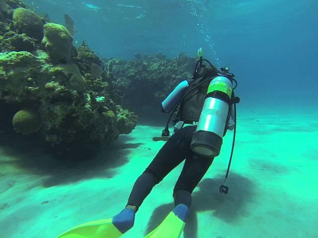 Scuba Diving In Jamaica. Dive 4 Gilbert Reef, Jewel Resort Runaway Bay