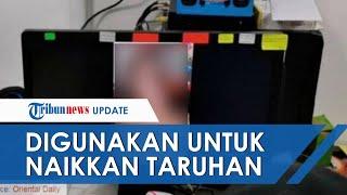 Video Cabul Gadis Indonesia Tersebar di Malaysia, Digunakan Kelompok Penjudi untuk Naikkan Taruhan