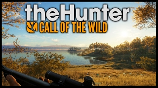 The Hunter: Call Of The Wild - MOOSE HUNTING! Black Bear & Black Tail Deer - The Hunter Gameplay