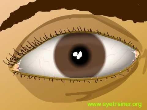 Exerciții pentru tratarea și îmbunătățirea vederii
